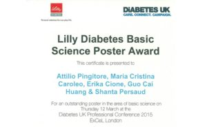 unical_duk_2015_poster_award_certificate