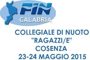 fincalabria_collegiale