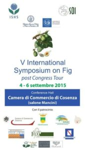v_international_symposium_on_fig