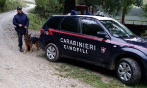 ricerche-carabinieri-unità-cinofile-cani