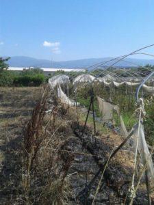 incendio_le_agricole_don_giacomo_panizza_1