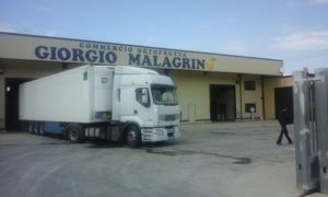 corigliano_calabro_giorgio_malagrino