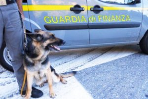 guardia_di_finanza_cane_antidroga