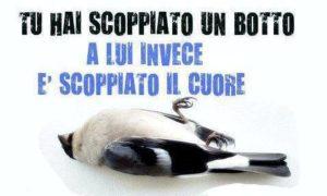 lipu_no_botti