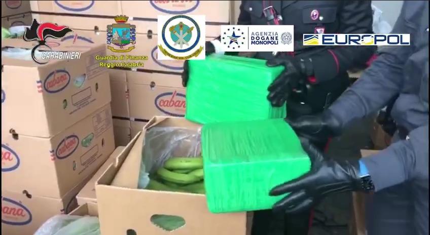 Sequestro record di cocaina al porto di Gioia Tauro: nascosti tra le banane quasi 1.200 kg di sostanza purissima – VIDEO - CosenzaPage